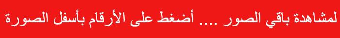 عروض بنده عملاق العروض 28 ذي الحجة 1437