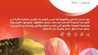 Photo of عروض موسم الرياض عروض الملز AL Malaz
